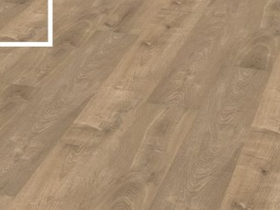 Valley Grey Oak