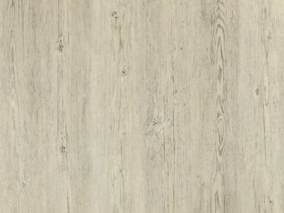 Brushed Pine White