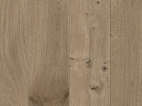 64083 Seashell Oak