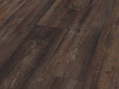 Scotch Pine D4774 - Dynamic Plus - Kronotex