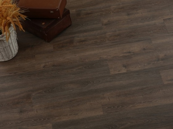 GW304 Oak privilege-raw umber