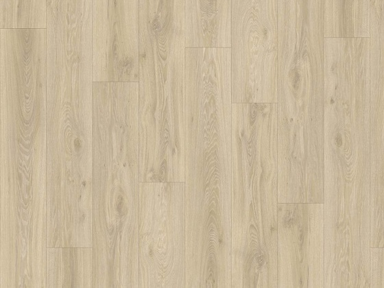 BLACKJACK OAK 22215 - Transform - Moduleo