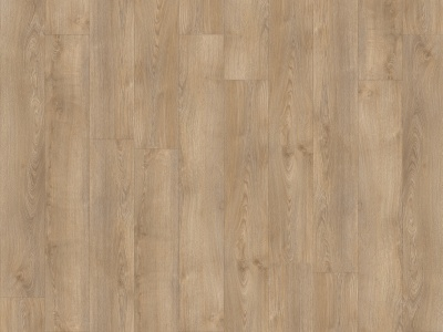 SHERMAN OAK 22232    - Transform Wood XL - Moduleo