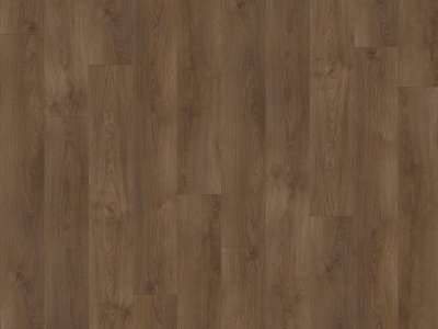 SHERMAN OAK 22841    - Transform Wood XL - Moduleo