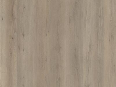 Light Oak   - Vivero Click - Ambiant